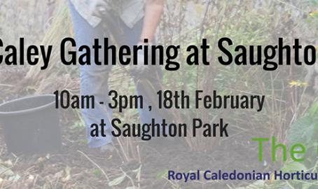 Caley Gathering 18 Feb 2017