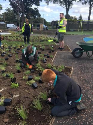 Playground Planting