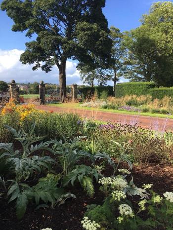 Walled Garden 2018