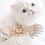 Thumbnail: 4 Piece Set - Luxury Beige Ostrich Angel Wing Harness Leash Handbag