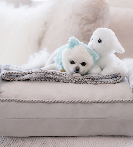 Modern Ice Angel Collection Light Gray Pet Bed
