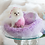 Thumbnail: Fairy Princess Pet Car Seat