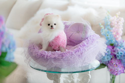 Fairy Princess Pet Car Seat
