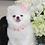 Thumbnail: Luxury Pink Spike Vegan Pet Collar