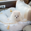 Thumbnail: Royal Angel Collection Pet Car Seat