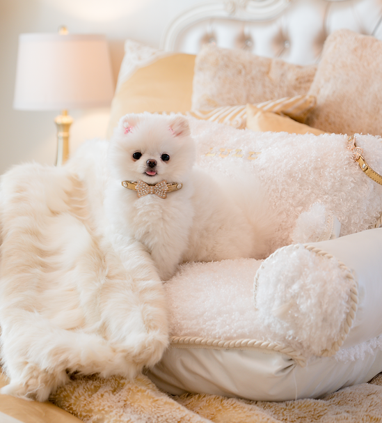 Ivory Palace Collection Pet Bed