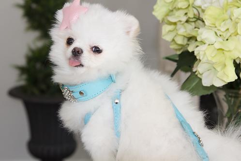 Luxury Tiffany Blue Pet Sliding Harness Leash set