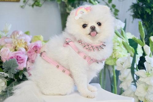 Luxury Triple Spike Matte Pink Pet Harness, Collar & Leash Set