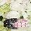 Thumbnail: Luxury Black Spike Vegan Pet Collar