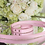 Thumbnail: Luxury Pink Spike Pet Harness + Leash Set Vegan Leather