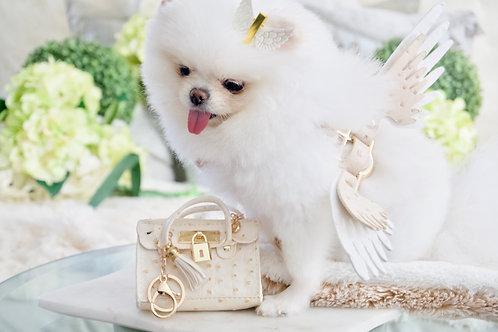Luxury Mini Pet Handbag Tan Ostrich Keychain