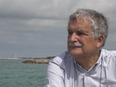 FLUIDODINAMICA SOTTOCOSTA: intervista ad Enzo Pranzini