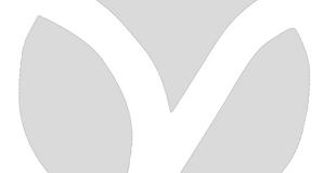 Fond-bannière-gris.png