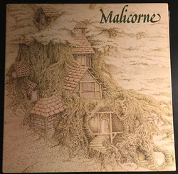 Disque vynile Malicorne