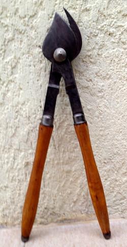 Cisaille tailler les vignes