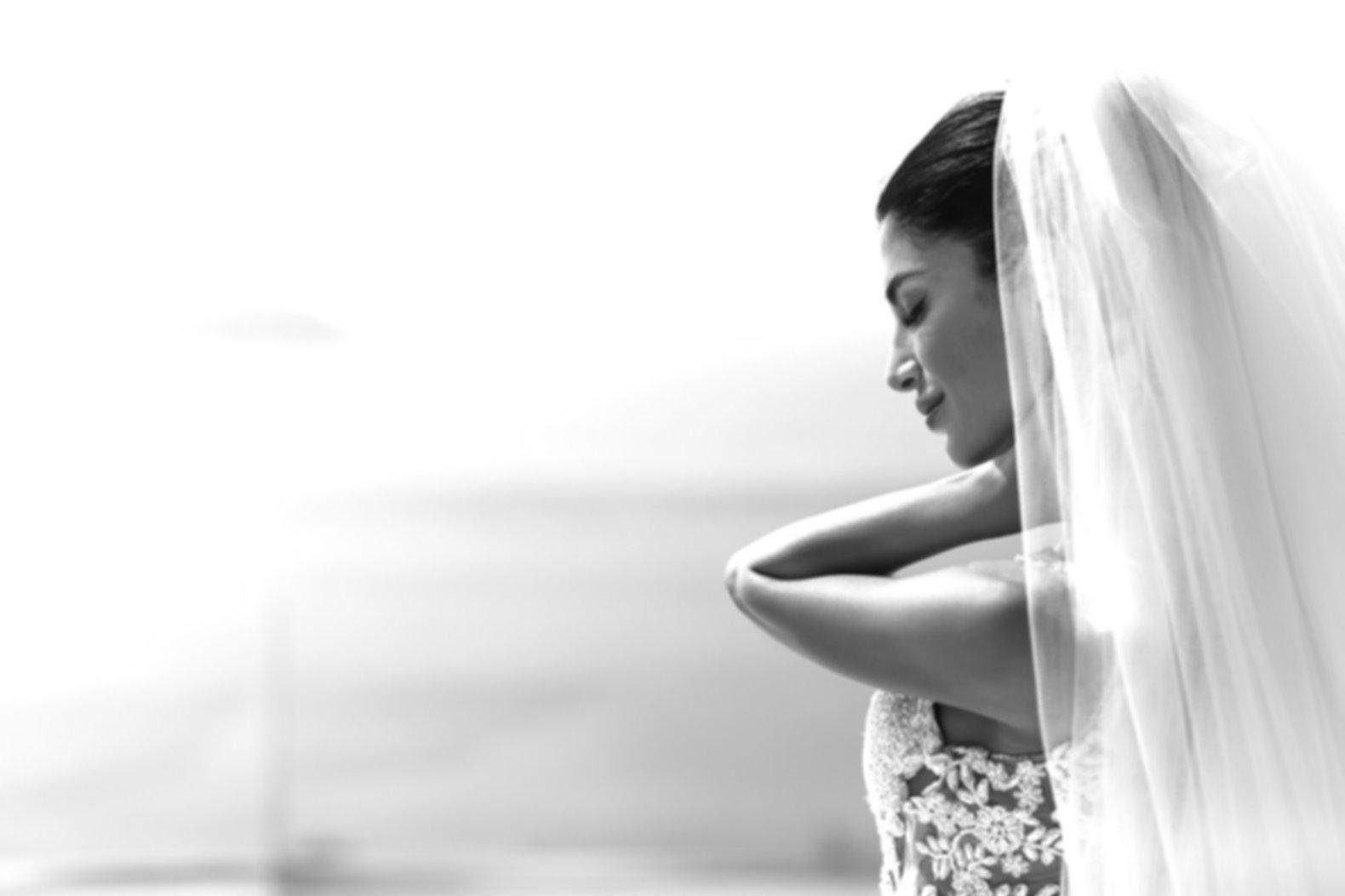 Portrait of beautiful luxury bride in ve