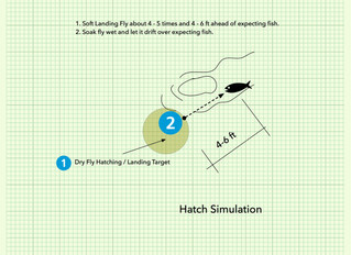 Hatching Simulation with Tenkara rod
