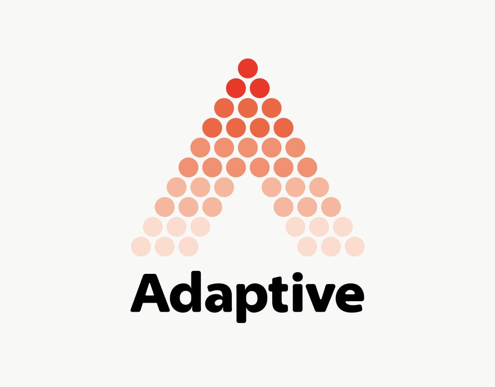 adaptive_01_アートボード 1 のコピー 3.jpg