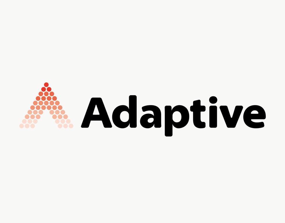 adaptive_01_アートボード 1 のコピー 2.jpg