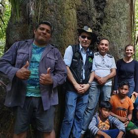Visita a árvore adotada