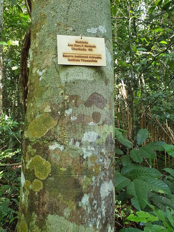 Placa de Identificação