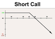 VTS Options  -  Short Call website pictu