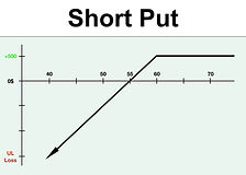 VTS Options  -  Short Put website pictur