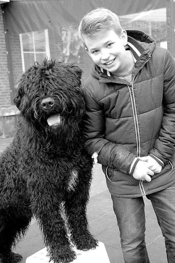 Honden werken, tharapiehonden helpen, adhd trainen met honden