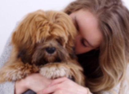 Uw therapiehond, therapiehonden, psychische hulphonden