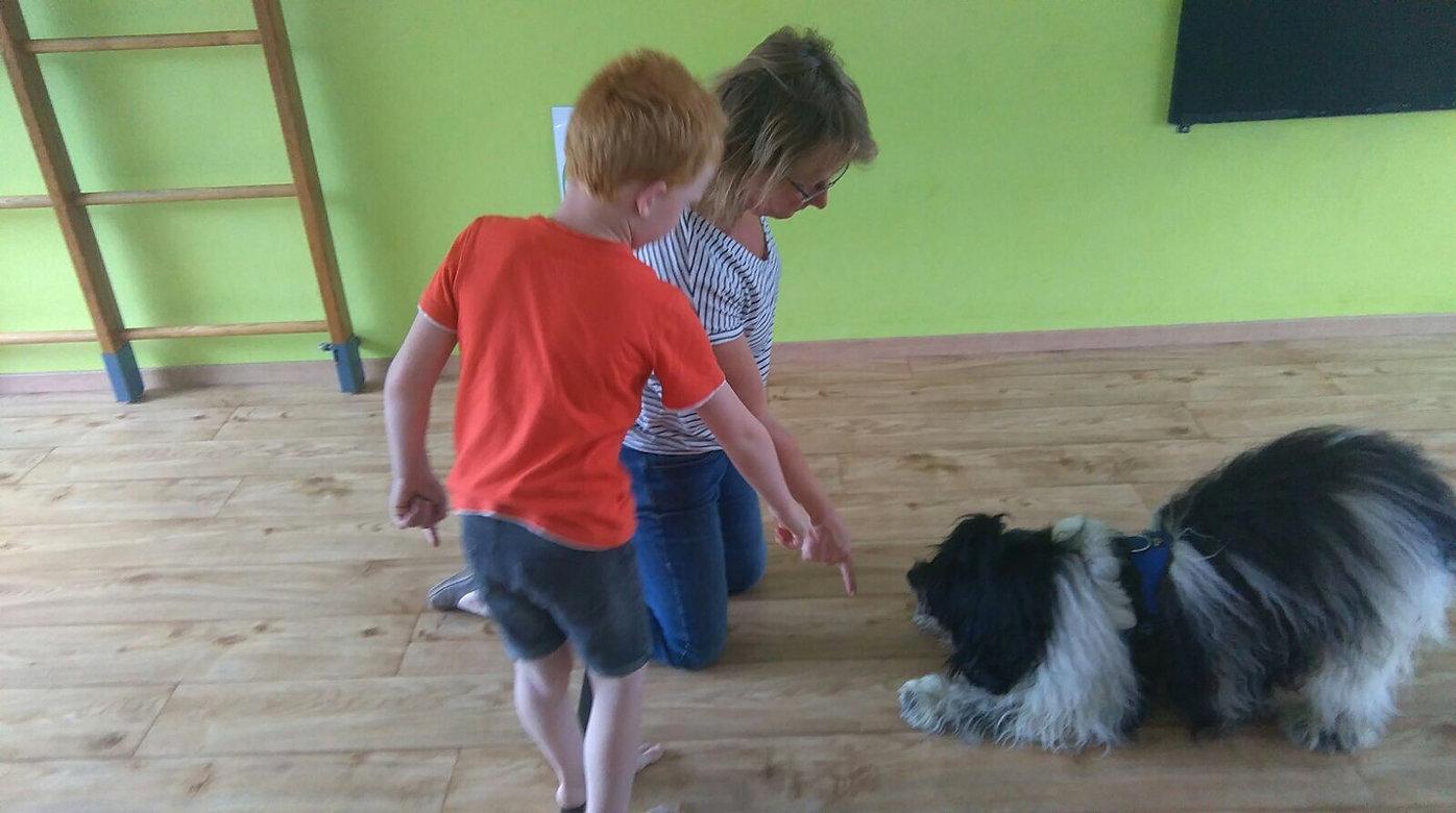 therapiehonden, met honden werken, theapiehondbegeleiding, training met een therapeut