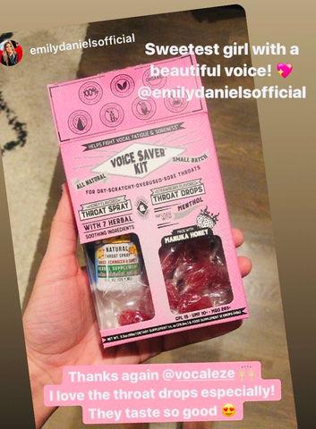 Strawberry Voice Saver Kit