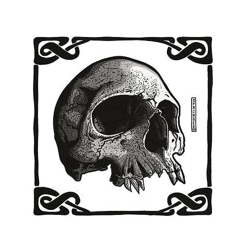 "ART PRINT - ""Vampire Skull"""