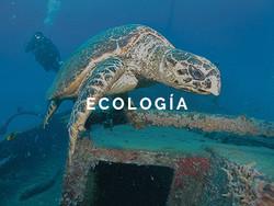 destaques_ecologia_ESP