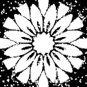 logo_edited-branco_edited_edited_edited_