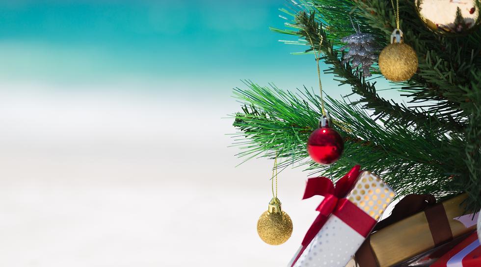 Christmas tree on beach 1800 x 1000 px.p