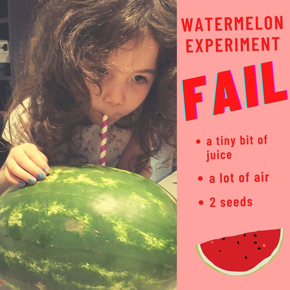 """<img src=""""juicy watermelon.png"""" alt=""""drinking from a watermelon experiment fail fruit kids love"""">"""