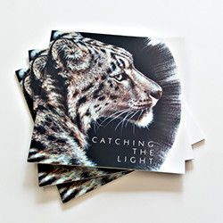 Catching The Light exhibition catalogues