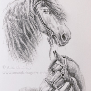 2: Friesian Sketches