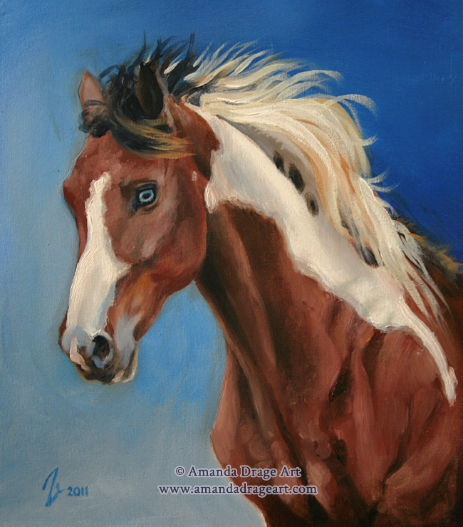 Bay Paint Horse Oil Painting