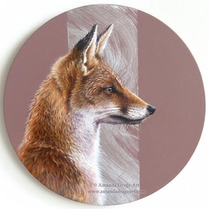 Eye To Eye - Red Fox