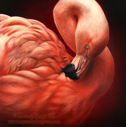 Flamingo Oil Painting
