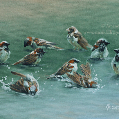 Sparrows Oil Painting