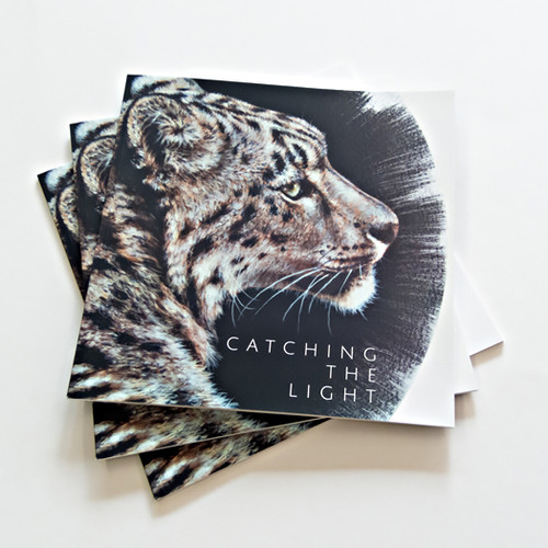 Catching The Light catalogues by Amanda Drage Art