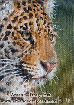 Jaguar Miniature Painting
