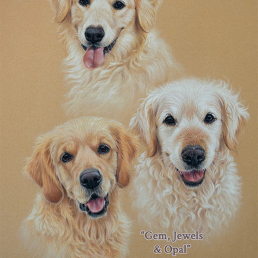 16-Golden-Retrievers-Pastel-Group-Portra