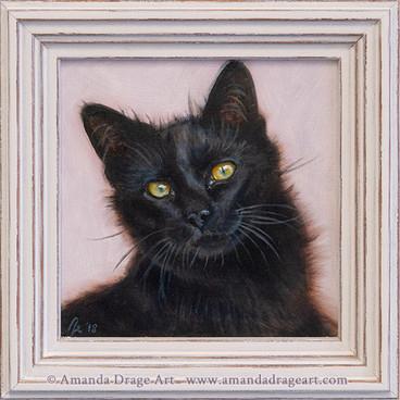 Black Cat Oil Painting