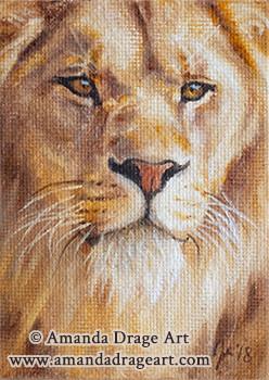 Lion Miniature Painting