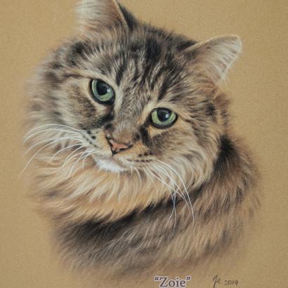 Tabby Cat Pastel Portrait