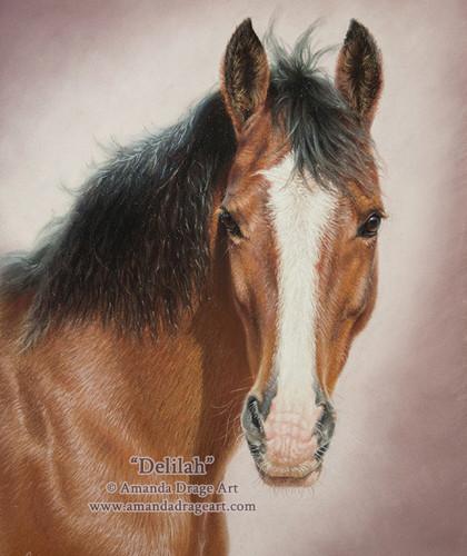 Horse Pastel Portrait on Sanded Paper