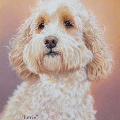 Cream Cockapoo Pastel Portrait